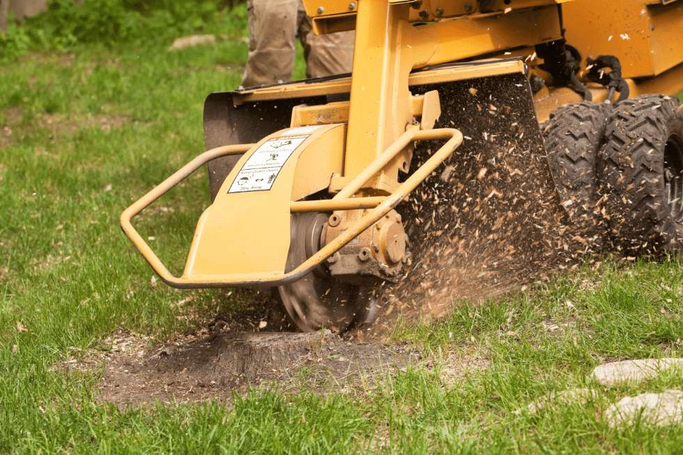 Tree Service Mobile AL - Stump Grinder grinding the stump to small pieces